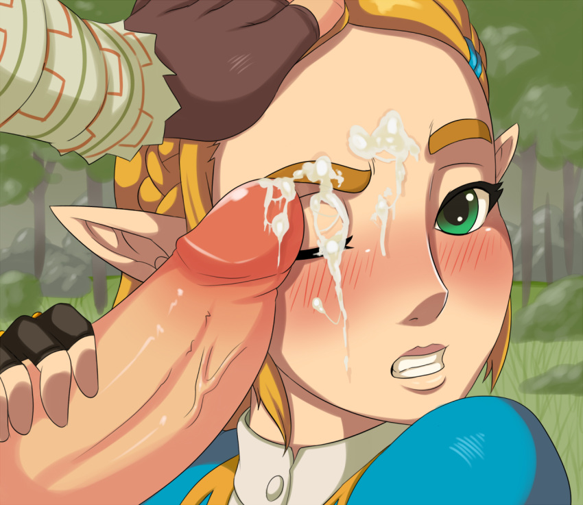 of breath in the wild is pregnant zelda Breath of the wild rola